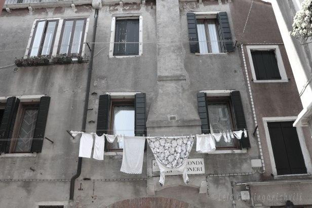 venezia5